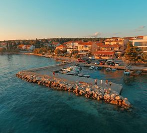 Delfin (Zadar)