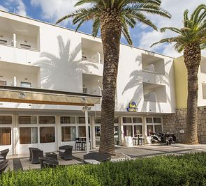 Palma (Makarska)