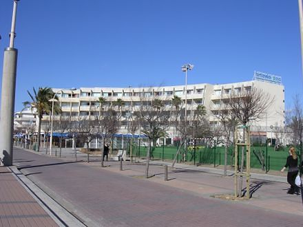 Palma Fontanellas