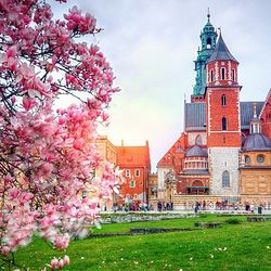 Centrum Kraków