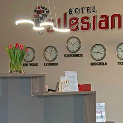 Economy Silesian ex Eco System