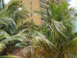 Courtyard Marriott Isla Verde