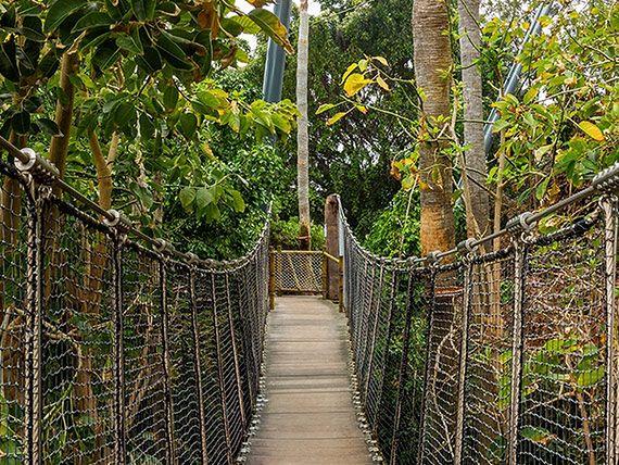 Ogród zoologiczny Loro Park